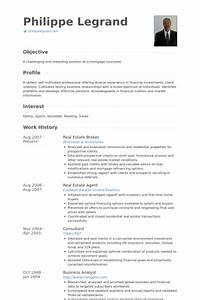 Real Estate Broker Resume samples VisualCV resume
