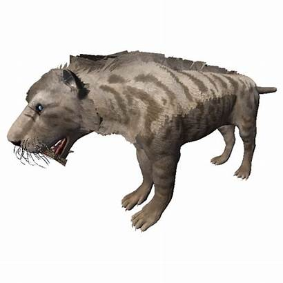 Machairodus Ancestors Giganteus Humankind Odyssey Alba Gamepedia