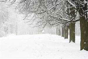 MoCo Snow Blog: Blizzard 2016 | Montgomery Community Media