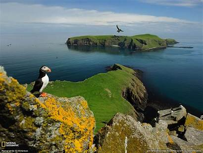 Geographic National Wallpapers Island Puffin Breathtaking Shiant