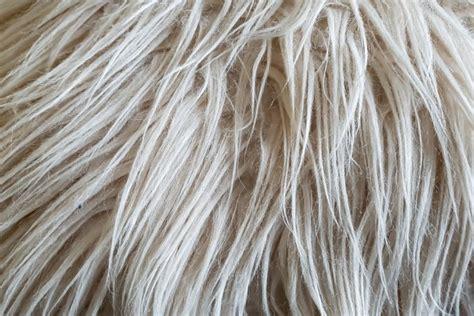 pulire tappeto come pulire tappeti a pelo lungo i consigli donnad