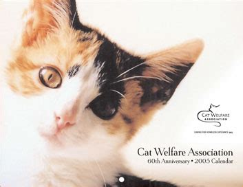 cat welfare calendar