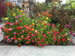 Flower Bed Designs For Front Yard The Best Flowers Ideas