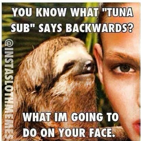 Gross Sex Memes - 17 best images about sloth jokes on pinterest creepy sloth funny and nice