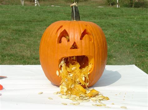 easy pumpkin cool easy pumpkin carving ideas but then i found the quickest easiest and coolest pumpkin