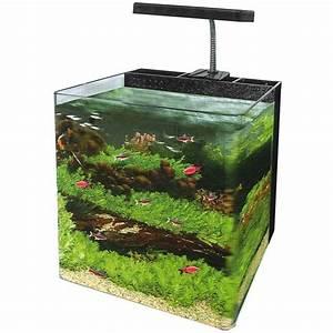 Nano Reef Tank 24 Litre - Nano Tanks - Aquariums/Fish