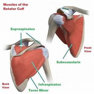 How To Treat Rotator Cuff Pain And Rotator Cuff Injuries