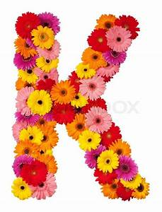 Letter K - flower alphabet isolated on white background