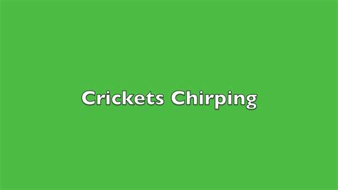 Crickets Chirping Meme - crickets chirping sound effect youtube