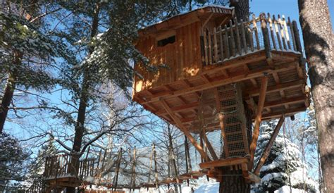 chalet dans les arbres vosges cabanes dans les arbres 224 aubure alsace vosges grand est site officiel accueil
