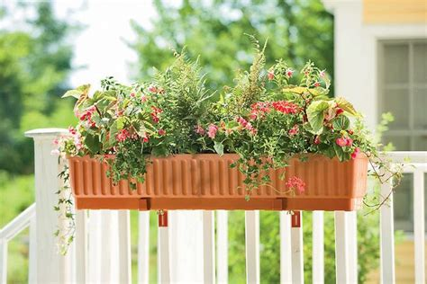 16 best images about window box inspiration on