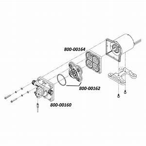 Pumps  U0026 Parts