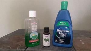 dog shampoo for allergies choosing bath products for you pet With dog shampoo for allergies