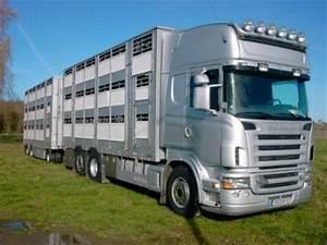 Camion Remorque Occasion : le camion remorque a dehosse a vendre varkens ~ Medecine-chirurgie-esthetiques.com Avis de Voitures