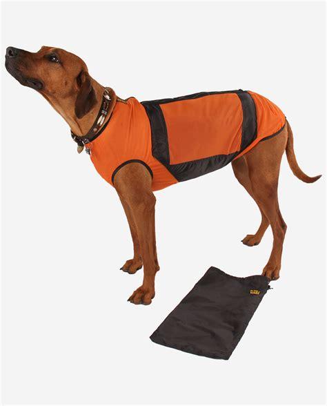 kuehlweste rr dogs ware hundebekleidung nach mass