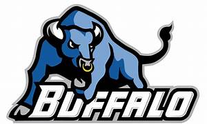 University at Buffalo Swimming and Diving Adds Four Spring ...