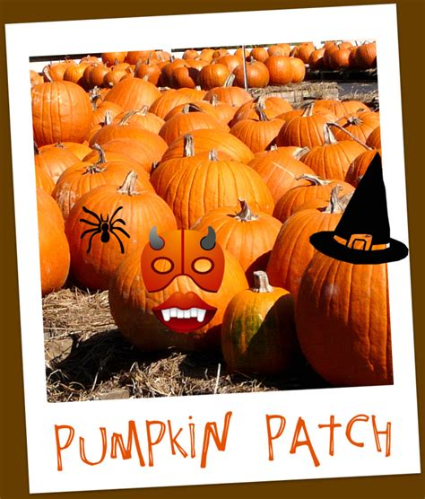 Pumpkin Patch Near Spring Tx by Halloween Activities In Spring Texas Spring Texas Real