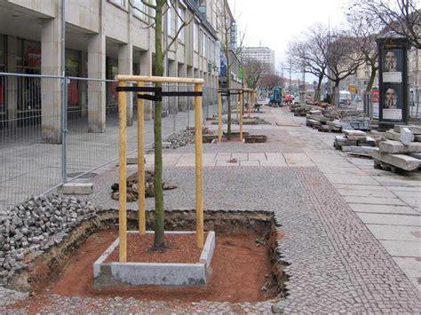 Auf Tiefgarage Pflanzen by Leistungen Baumpflanzung Fr Mehr Lebensqualitt