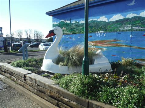 Exmouth Swan Boats by Swan Update Fixed And Looking Wonderful Again Exmouth
