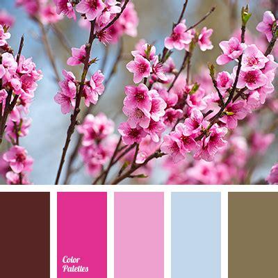 cherry blossom color shades of cherry blossom color palette ideas