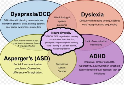 Diagram Of Adhd by Adhd And Vitamin D Deficiency