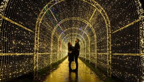 Botanischer Garten Berlin Eisbahn by World S Largest Light Maze Market Scheduled
