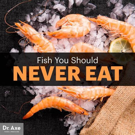 fish eat seafood should never healthy health which salmon safe sea food dr options axe safer they eating bass stay