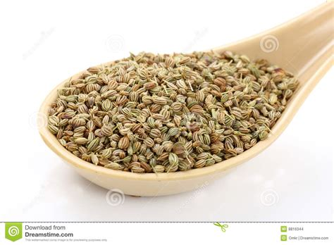 aroma indian cuisine spoon of ajwain seeds stock images image 8816344