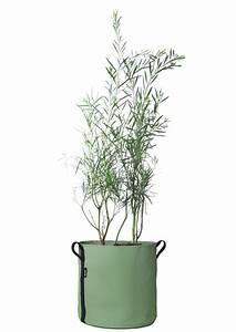 Cache Pot Plante : plante verte archives le blog d co de mlc ~ Teatrodelosmanantiales.com Idées de Décoration
