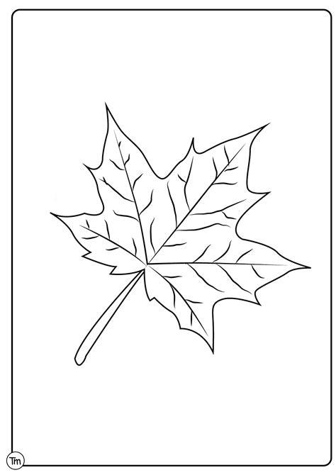 easy fall craft  preschoolers teachersmagcom