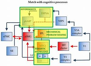Relationship Of Wiring Diagram Of Phaip And Asmg
