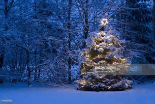 christmas tree with lights in the snow stock photo getty images