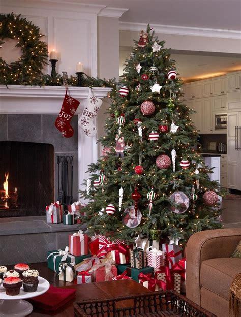 fir christmas tree ideas 1000 ideas about fraser fir on decorations decor and trees