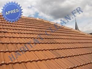 Tarif Nettoyage Toiture Hydrofuge : hydrofuge tuile toiture sur beaune 21 chalons 71 ~ Melissatoandfro.com Idées de Décoration