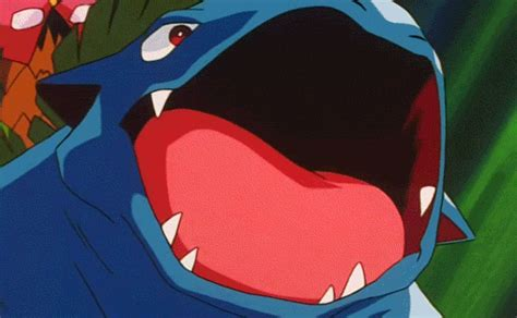 top ten vgc mega pokemon pokemon amino