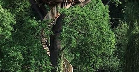 A magical hideaway, nestled deep in the woods. Kelly Osbourne - Treehouse | Treehouse | Pinterest | Kelly ...
