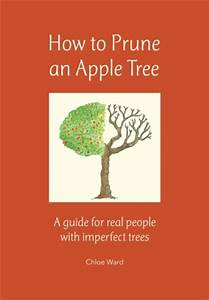 How To Prune An Apple Tree  A Guide For Real People With