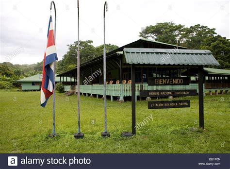 at the sirena ranger station in corcovado national park costa rica stock photo royalty free