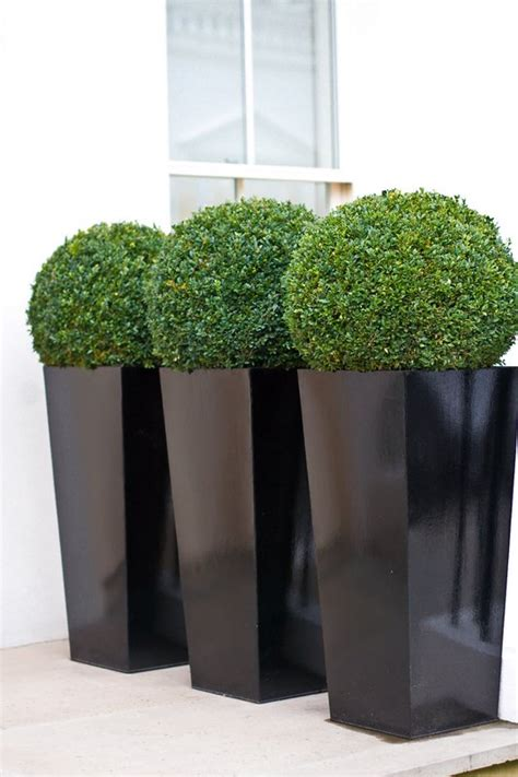 Modern Outdoor Planters by Contemporary Planters Outdoor Planters Designer