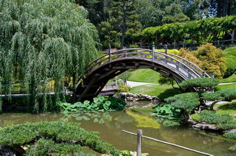 botanical gardens pasadena ca jim mcconnell photography huntington botanical gardens pasadena ca