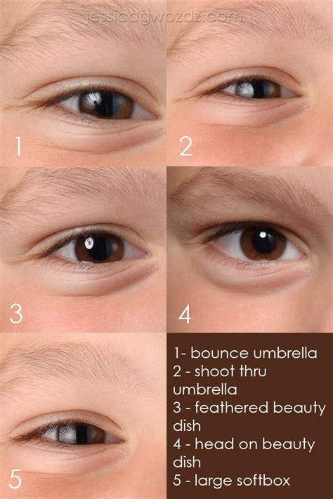 studio lighting softbox  umbrella  beauty dish photography tips tricks softbox