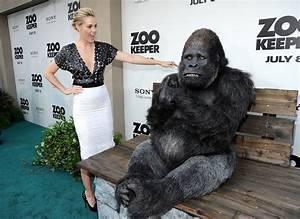 "Leslie Bibb in Premiere Of ""The Zookeeper"" - Arrivals - Zimbio"