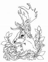 Coloring Pages Deer Adult Printable Patterns Adults Sheets Colouring Leather Hunting Knife Celtic Animals Wood Drawing Drawings Motif Leaf Animal sketch template