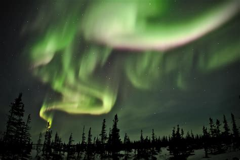 dancing  swirling northern lights dancing   clear