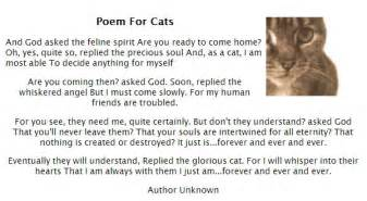 cat poem cat sympathy poems quotes quotesgram
