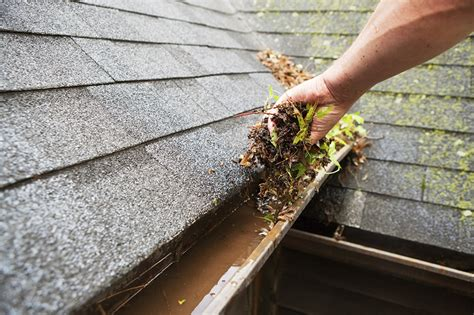 gutter cleaning  cleaning crew llc