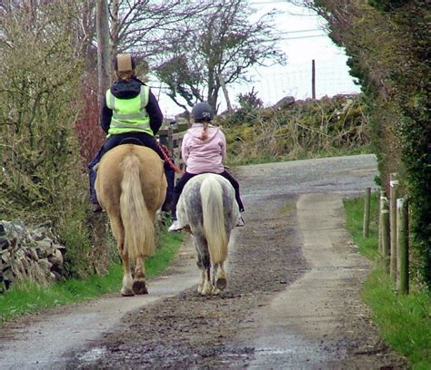 pony trekking wales outside north dry land suitable ages