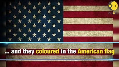 Flag Trump American Wrong