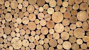 Wood Cellulose Material Is Stronger Than Spider Silk