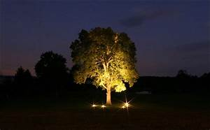 landscape lighting uplight trees outdoor furniture With outdoor lights for oak trees